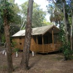 deluxe cabin accommodation 1770, agnes water